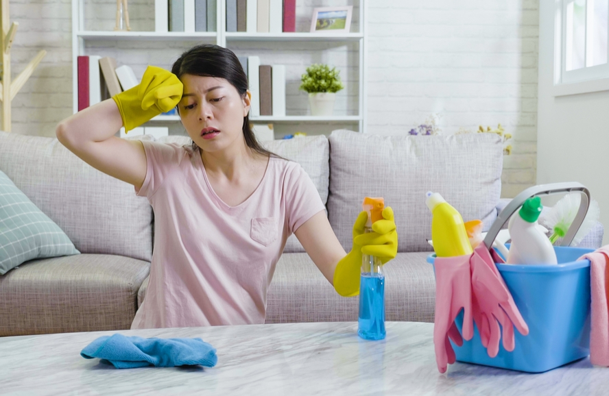 Qual o real valor do trabalho doméstico?